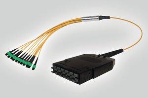RapidNet MTP 12C Cassette to SM Fan Out