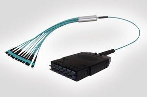 RapidNet 12 MTP Cassette to MTP Fan Out