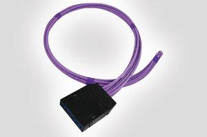 RapidNet 6 Port UTP Cassette to Bare End