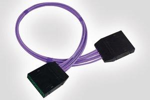 RapidNet 6 Port UTP Cassette to Cassette