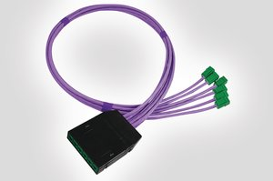RapidNet 6 Port UTP Cassette to GST Jack