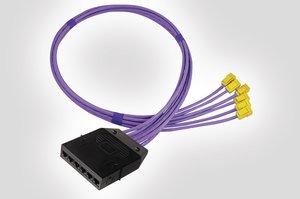 RapidNet 6 Port Cassette to GST Jack