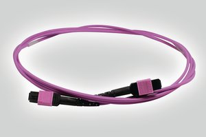 MTP Back-Bone Cable