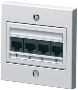 4 Port Category 5e Outlet